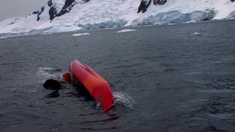 A-man-performs-a-dangerous-rollover-maneuver-in-a-kayak-in-Arctic-waters