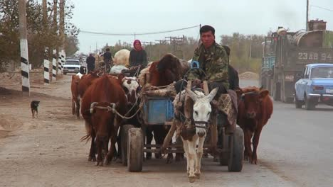An-oxcart-travels-on-a-road-in-Kazakhstan-or-Uzbekistan