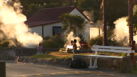 Smoke-rosies-from-around-homes-and-buildings-in-the-geothermal-area-of-Rotorua-new-Zealand