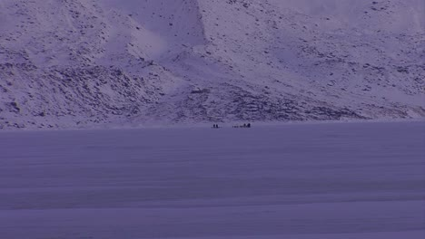 An-eskimo-dogsled-heads-across-the-frozen-tundra-in-the-distance