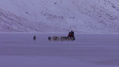 An-eskimo-dogsled-heads-across-the-frozen-tundra-in-the-distance-1