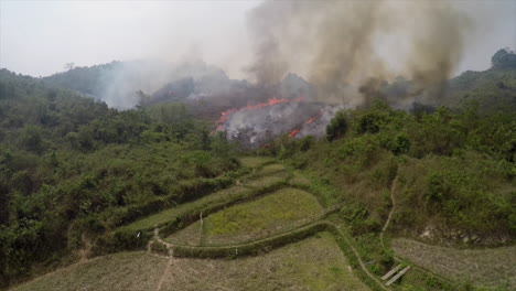 An-excellent-aerial-over-a-jungle-scene-with-a-wildfire-burning