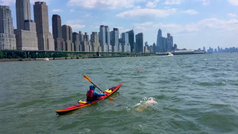 A-Swimmer-Swims-Up-The-Hudson-River-With-New-York-City-In-The-Background-1