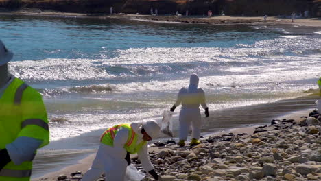 Workers-Clean-Up-After-The-Massive-Beach-Cleanup-Effort-Following-The-Refugio-Oil-Spill-In-Santa-Barbara-2