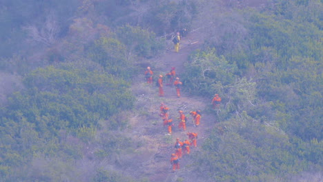 Firefighters-Cut-A-Fire-Line-In-Dense-Brush-And-Vegetation-During-The-Thomas-Fire-In-Ventura-And-Santa-Barbara-California