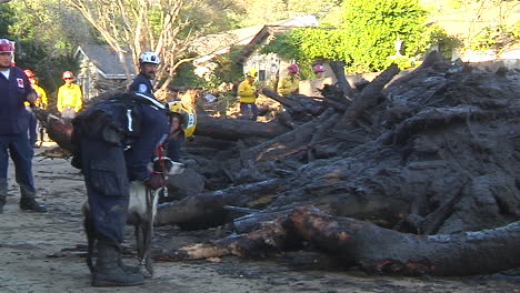 Search-And-Rescue-Crew-With-Cadaver-Dog-Inspect-Damage-From-The-Mudslides-In-Montecito-California-Following-The-Thomas-Fire-Disaster