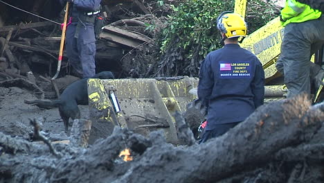 Search-And-Rescue-Crew-With-Cadaver-Dog-Inspect-Damage-From-The-Mudslides-In-Montecito-California-Following-The-Thomas-Fire-Disaster-2