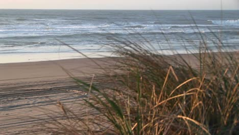 On-A-Lateseason-Day-The-Camera-Pans-Right-Along-An-Empty-Stretch-Of-A-Sandy-Beach-With-Grasses-Waving-In-The-Breeze