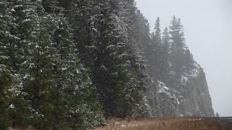 A-Steep-Partial-View-Of-A-Wooded-Mountainside-In-A-Snow-Storm