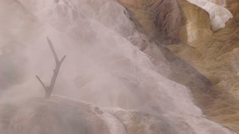 A-Dead-Tree-Branch-Mysteriously-Rises-Out-Of-Limestone-Deposits-Encased-In-A-Misty-Shroud-Of-Rising-Steam-In-This-Surreal-Landscape