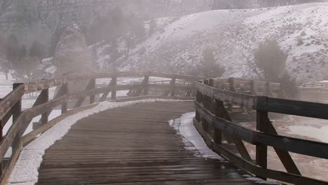 Steam-Rises-From-The-Hot-Springs-Area-In-Yellowstone-National-Park