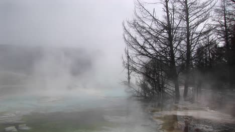 Mediumshot-Of-Steam-Rising-From-A-Thermalpool-In-Yellowstone-National-Park-Wyoming