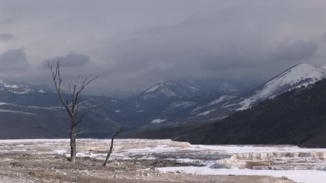 A-Lone-Tree-Adds-Interest-To-This-Otherwise-Stark-Winter-Landscape