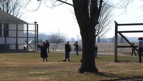 A-Group-Of-Amish-Young-People-Are-Playing-Games-Outdoors