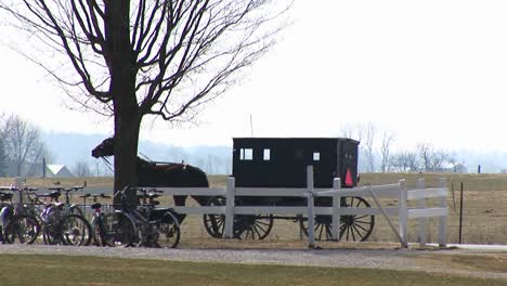 An-Amish-Horse-And-Buggy-Trot-By-A-Rural-Property-With-Bicycles-Parked-Under-A-Tree