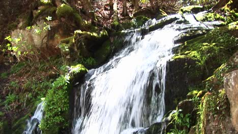 Lush-Vegetation-Surrounds-A-Cascading-Waterfall