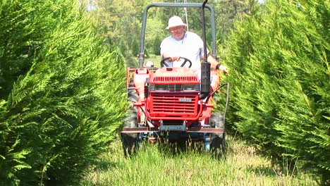A-Man-On-A-Small-Tractor-Makes-His-Way-Between-Two-Tall-Hedgerows