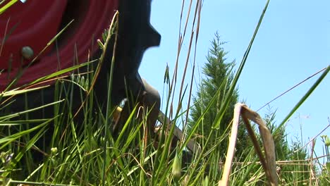 A-Wormseye-View-Of-A-Grassy-Field-As-A-Red-Mower-Passes-By