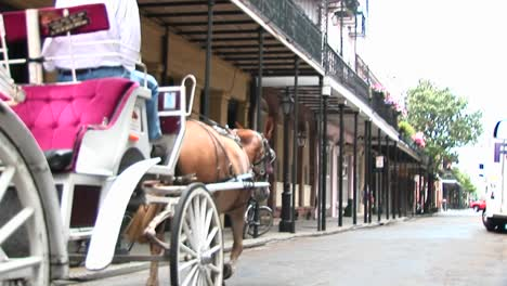 A-Horse-Drawn-Carriage-Makes-Its-Way-Past-The-Camera-And-Down-A-Street-In-New-Orleans