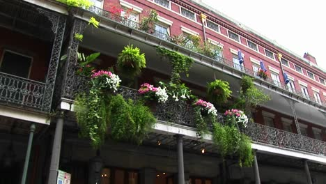 Beautiful-Flowers-Adorn-A-Balcony-In-New-Orleans-S-French-Quarter