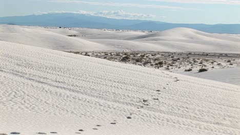 Panup-Of-Tracks-In-A-Sand-Dune-At-White-Sands-National-Monument-In-New-Mexico