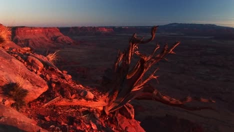 Mediumshot-Of-Canyonlands-National-Park-At-Sunset-With-The-La-Sal-Mountains-In-The-Distance