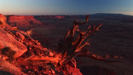 Mediumshot-Of-Canyonlands-National-Park-At-Sunset-With-The-La-Sal-Mountains-In-The-Background