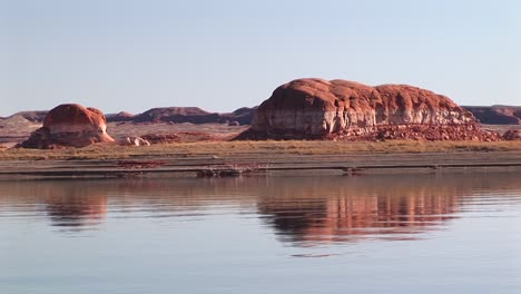 Crab-Right-On-The-Shore-Of-Lake-Powell