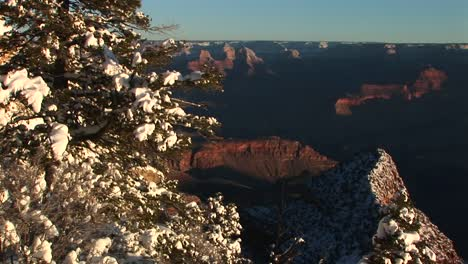 Longshot-Of-Grand-Canyon-National-Park-With-Winter-Snow-Covering-Trees-And-Rocks-In-Foreground