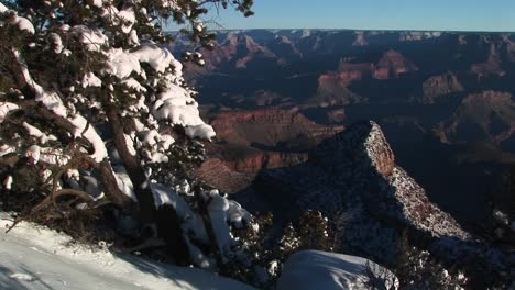Wide-Background-Of-Grand-Canyon-National-Park-With-Winter-Snow-Covered-Trees-And-Rocks-In-Foreground