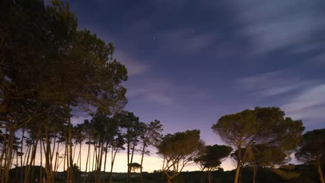 Portugal-Forest-Starlapse-4K-00
