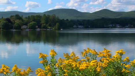 A-glassy-rural-lake-in-Central-Vermont-is-surrounded-by-trees-and-a-cloudy-blue-sky-1