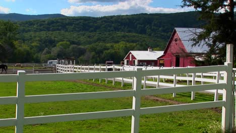 A-horse-in-the-background-of-a-white-fence-and-red-barn-at-day-in-Vermont