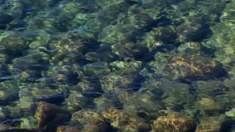 Las-Ondas-De-Agua-En-El-Lago-Tahoe-Distorsionan-La-Vista-De-Las-Rocas-Debajo-De-La-Superficie-De-Las-Montañas-De-Sierra-Nevada-