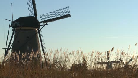 Windmills-rise-out-of-the-grass-in-Holland