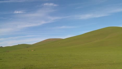 Green-fields-roll-to-the-horizon-against-a-deep-blue-sky