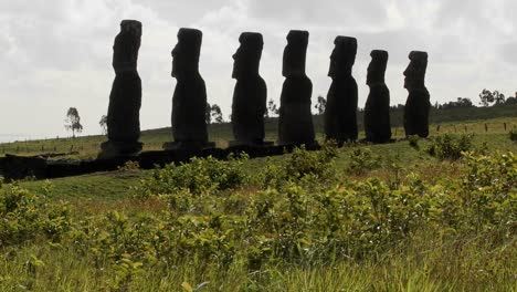 Grass-blows-in-front-of-the-Easter-Island-statues-1