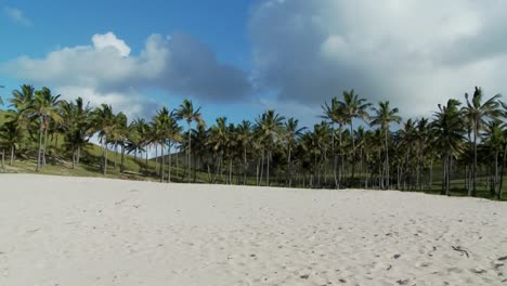 Pan-across-a-nearly-perfect-white-sand-beach-with-tropical-palms-in-the-distance
