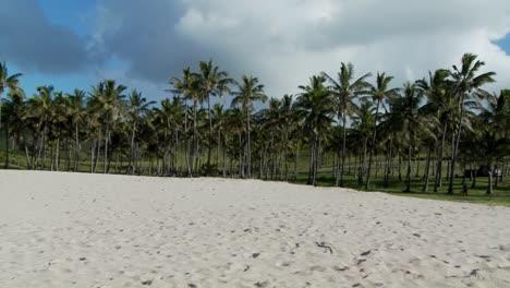 Pan-across-a-nearly-perfect-white-sand-beach-with-tropical-palms-in-the-distance-1