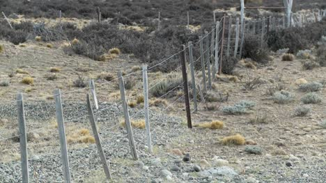 A-lonely-fence-on-the-windswept-plains-of-Patagonia-2