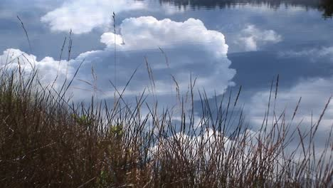 A-remarkable-shot-of-thunderclouds-billowing-over-a-calm-pond