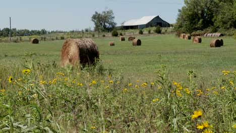 Bales-of-hay-in-the-fields-of-rural-farm