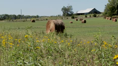 Pan-across-to-bales-of-hay-in-the-fields-of-rural-farm
