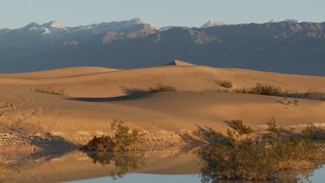 A-pan-across-desert-dunes-at-an-oasis