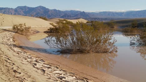 An-oasis-in-Death-Valley-National-Park-offers-a-refuge-from-the-heat