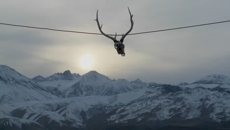 A-cow-skull-hangs-from-a-wire-at-a-Western-ranch