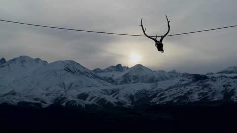 A-cow-skull-hangs-from-a-wire-at-a-Western-ranch-1