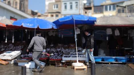 Fish-Market-00