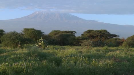 A-beautiful-morning-shot-of-Mt-Kilimanjaro-in-Tanzania-East-Africa