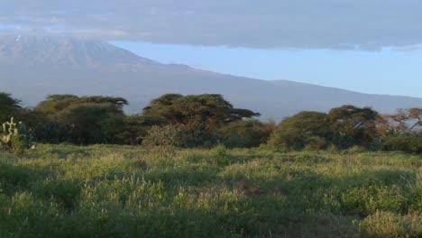 Una-Hermosa-Toma-Panorámica-De-La-Mañana-Del-Monte-Kilimanjaro-En-Tanzania-África-Oriental